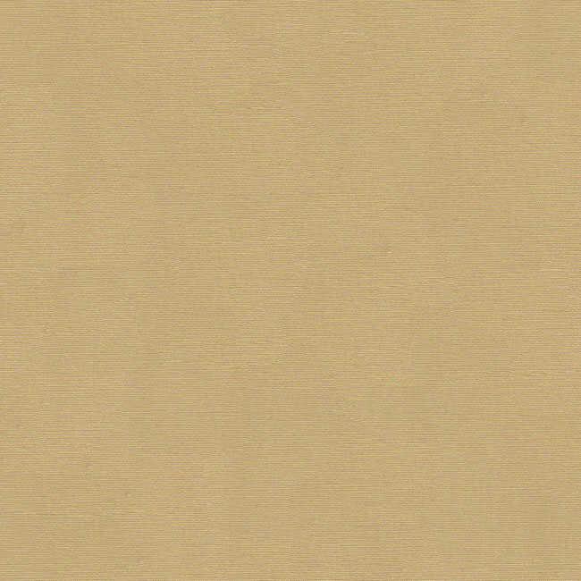 Corti Bej Renk Tentelik Kumaş 8000-367
