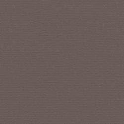 Sunbrella Plus Taupe Tekne Kumaşı Suntt 5548 152 - Thumbnail